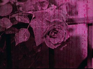 Barbara's Blindness (1965)